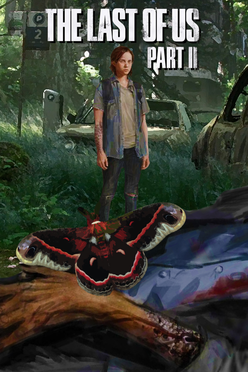 The Last of Us Part IIの画像 p1_27
