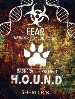 Hounds of Baskerville