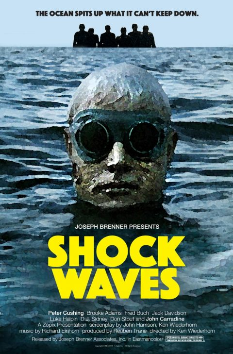 Shock Waves