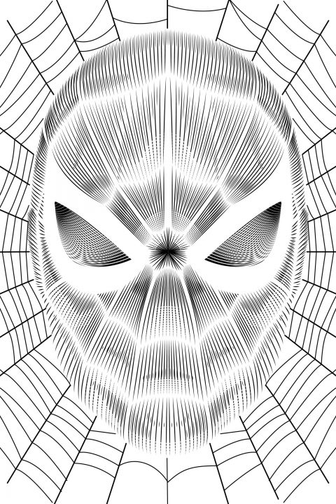 Spider-man: Homecoming- Vector Line poster (B&W and Color Variants)