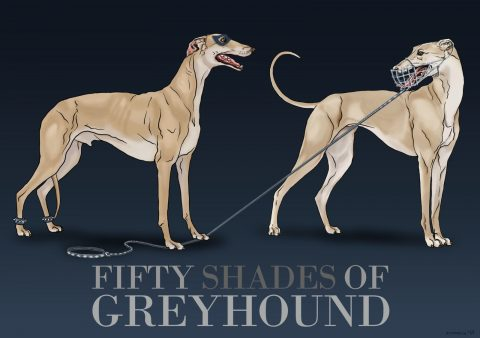 Fifty Shades Of Greyhound.