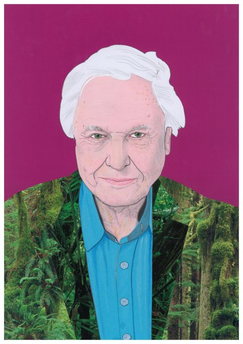 Sir David Attenborough portrait