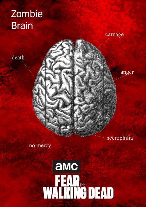 Zombie Brain