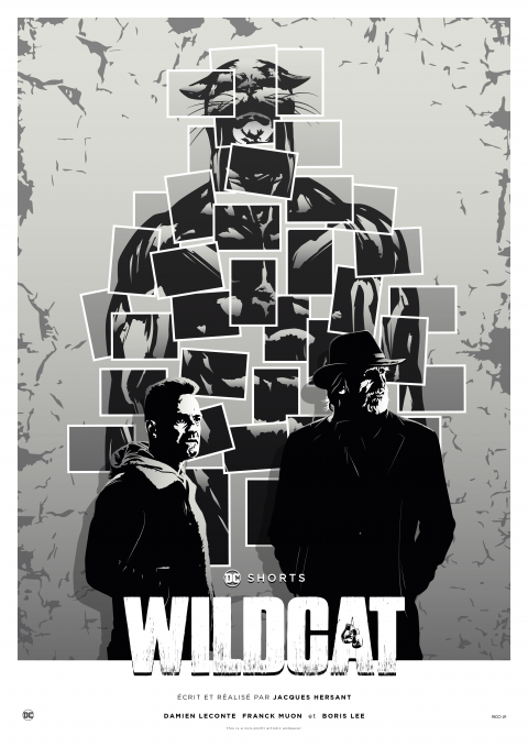 WILDCAT (Fan-Film) Poster Art