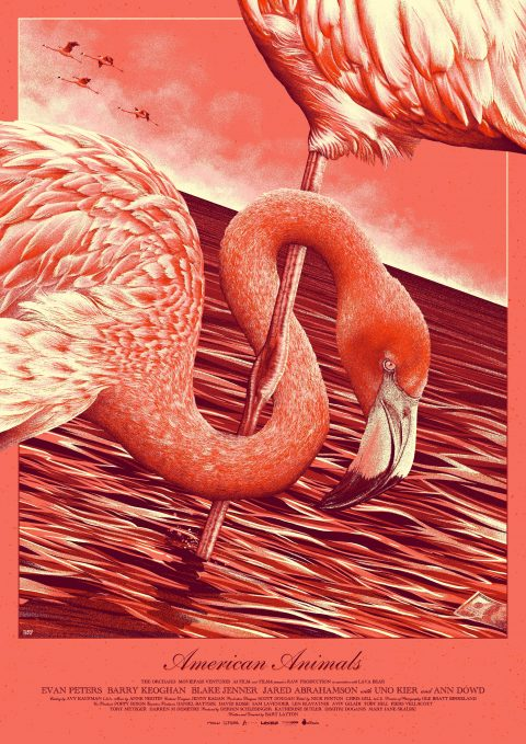 American Animal$ – Variant