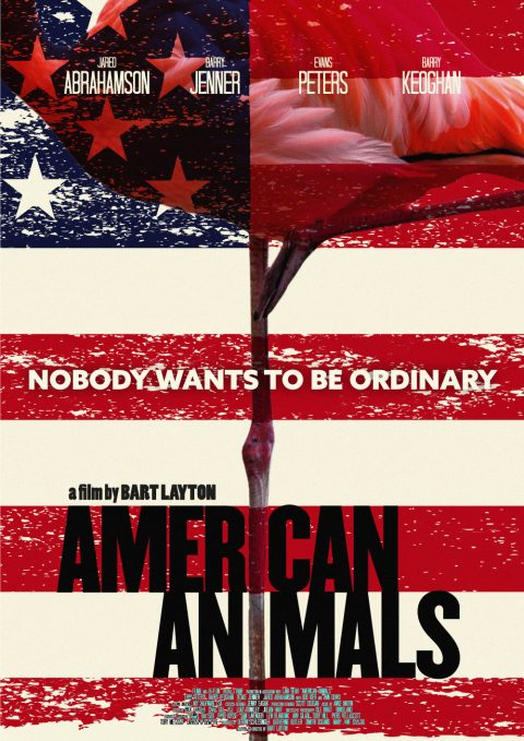 American Animals Flamingo Poster