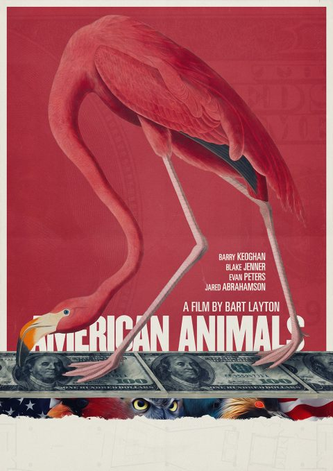 American Animals Stack Money