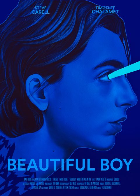Beautiful Boy by Felix Van Groeningen