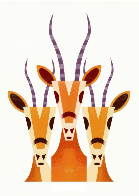 Graphic Gazelles