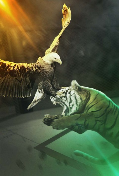 UFC – The Eagle and the Tiger