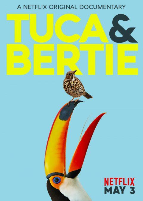 Yuca and Bertie