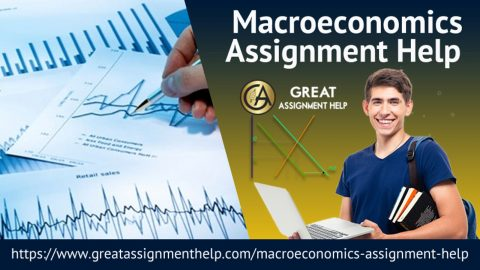 Finish your Macroeconomics Homework using highly-qualified experts' support