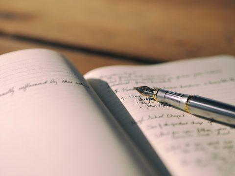 Sample Essay Writing