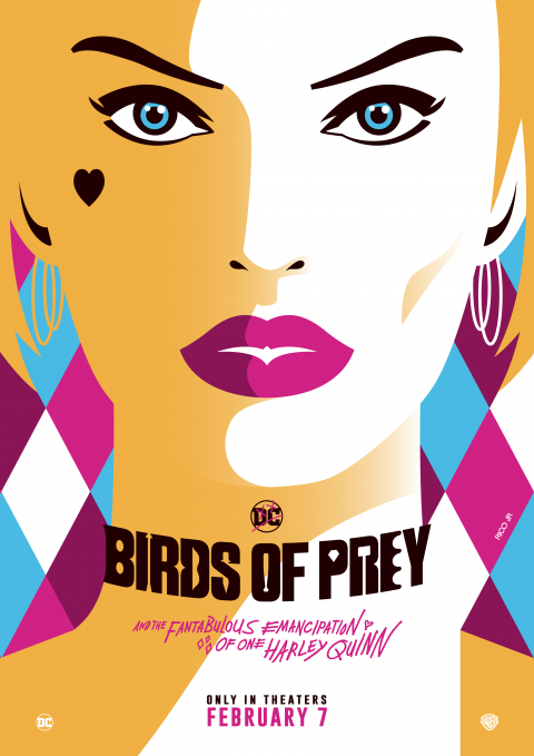 BIRDS OF PREY Poster Art