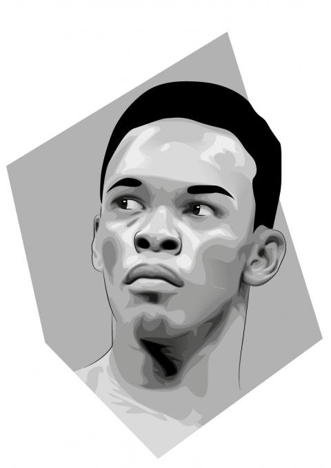UFC illustrations