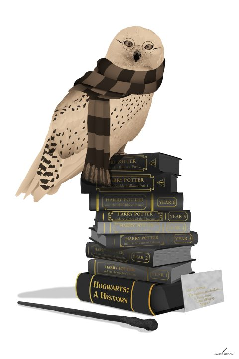 Hedwig Potter – Variant